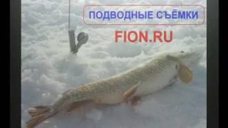 Ловля Окуня Зимой на Балансир   Зимняя рыбалка 2017