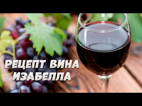 Домашнее вино из винограда изабелла пошаговый рецепт от А до Я.
