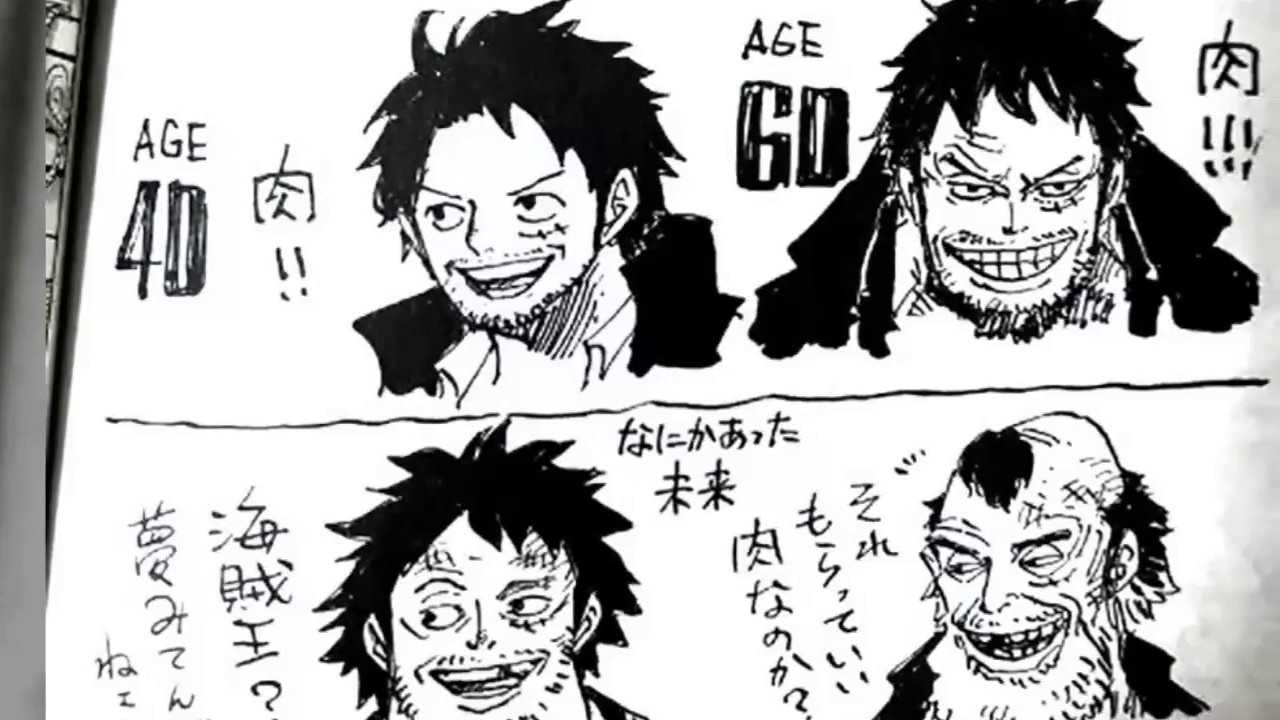 Monkey D Luffy In 40 And 60 Age Youtube