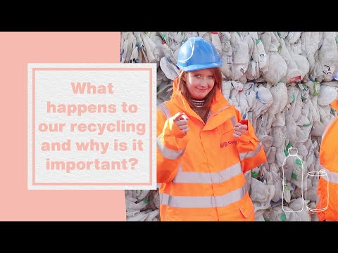 What happens to our recycling and why is it important? I Hubbub Investigates