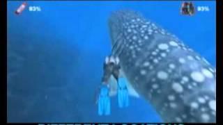 """Игра """"Дайвер. Тайны подводного мира (2008)"""""""