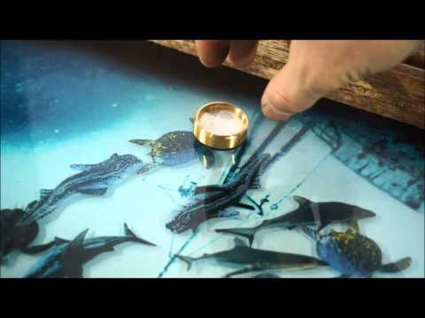 Нарды с рыбками плавающими внутри - V2. Лайкни видео !