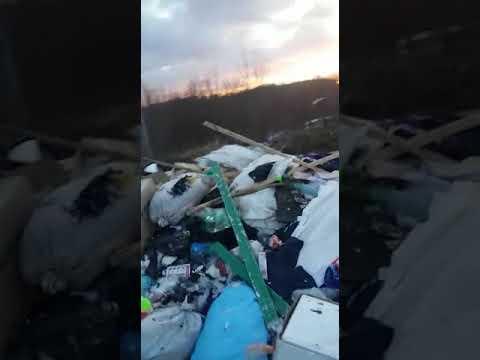 Видео мусорного полигона в Новодвинске