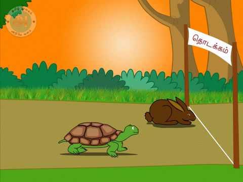 story   rabbit amp tortoise   youtube