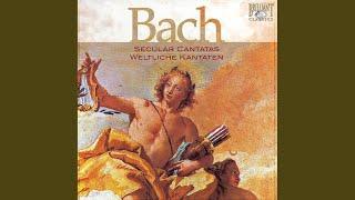 Lasst uns sorgen, lasst uns wachen, BWV 213: XIII. Coro - Lust der Völker, List der Deinen