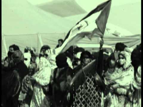 Sahrawi women in the occupied territories