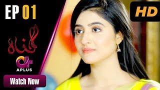 Gunnah - Episode 1 | Aplus Dramas | Sara Elahi, Shamoon Abbasi, Asad Malik | Pakistani Drama