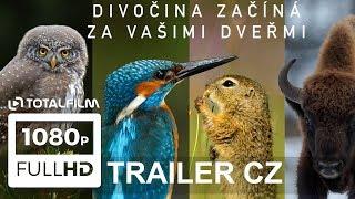 Planeta Česko (2018) HD trailer
