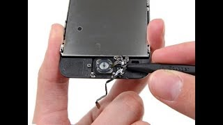 iPhone 5S, 6, 6S, Plus: Home Button Not Working? Simple Fix! DIY   2017  