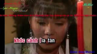 Karaoke Trích đoạn Giọt Máu Chung Tình - Song ca với NSUT Ngọc Huyền
