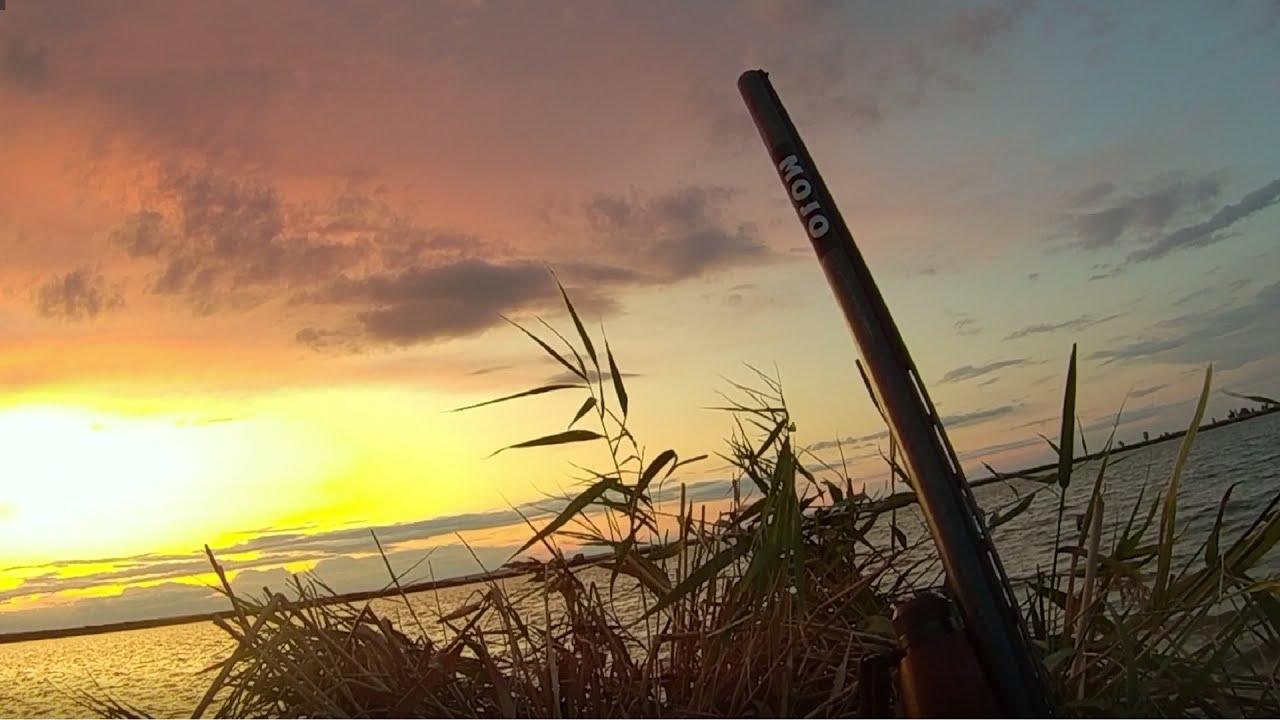 Открытие охоты на утку 2019 Отдых на природе