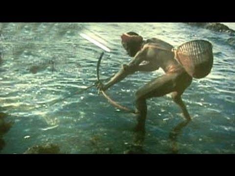 At the crossroads: The Andaman Jarawa