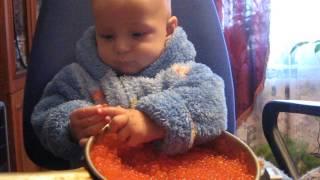 Сын помогает солить икру(2010 год Вот так сынок помогает :), 2014-03-08T07:10:38.000Z)