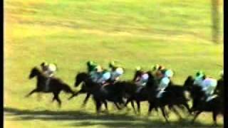 1980 Champion Stakes Newmarket. Cairn Rouge, Master Willie and Rankin.avi
