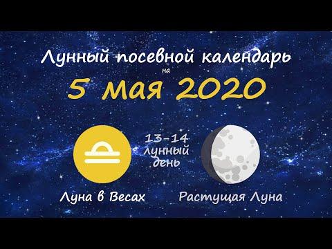 [5 мая 2020] Лунный посевной календарь огородника-садовода