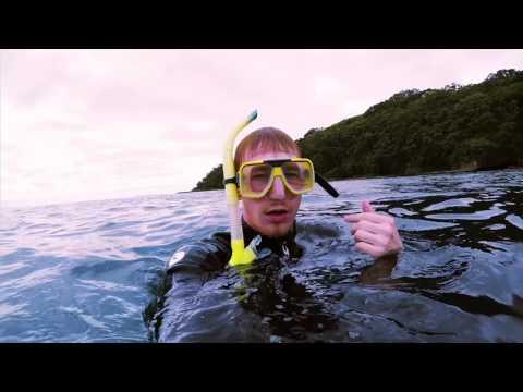 New Zealand Vlog 8