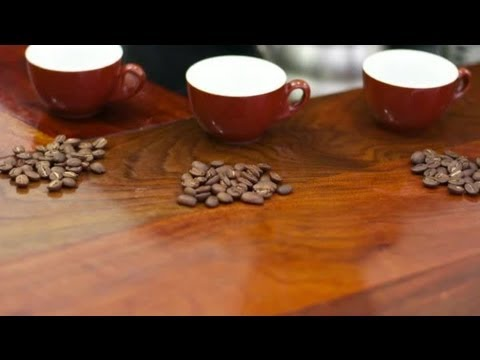 Different Types Of Coffee Beans : Coffee & Cafes