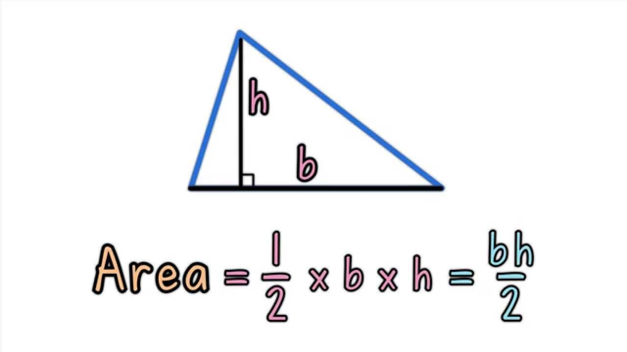 area of a triangle base and height youtube