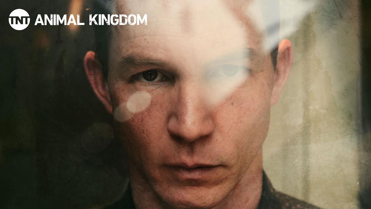 Download Animal Kingdom: Meet the Codys | Behind the Scenes | TNT