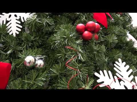 Holiday Tree Lighting Ceremony 12-9-16