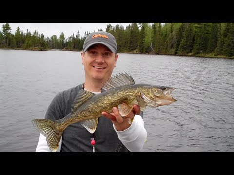 "BWCA 2016 - ""It's Frustrating"""
