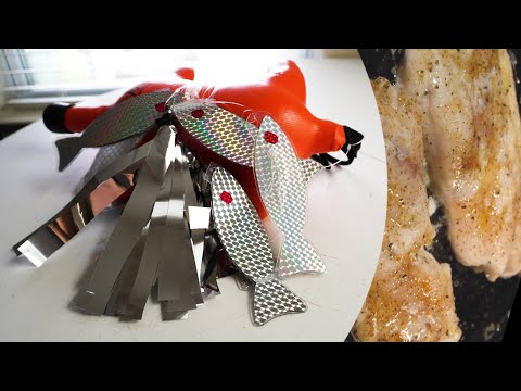 Spearfishing Flasher Build & Fish Cooking Q/A