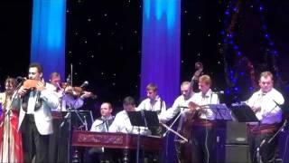 Concert Ionut Dolanescu - 1.avi