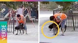 Todos los perritos del mundo merecen un gesto como este thumbnail
