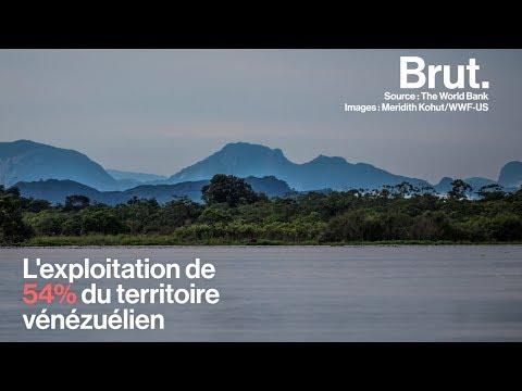 5 pays qui ont pris des mesures fortes pour la nature
