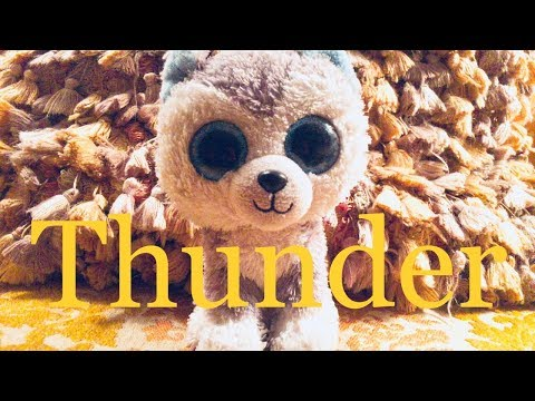 Thunder Beanie Boo Music Video
