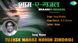 Tujhse Naraz Nahin Zindagi | Shaam-E-Ghazal | Masoom | Anup Ghoshal