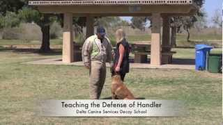 Delta Canine Services, Decoy Training, Decoy School