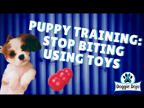 puppy-training:-how-to-stop-biting-using-toys
