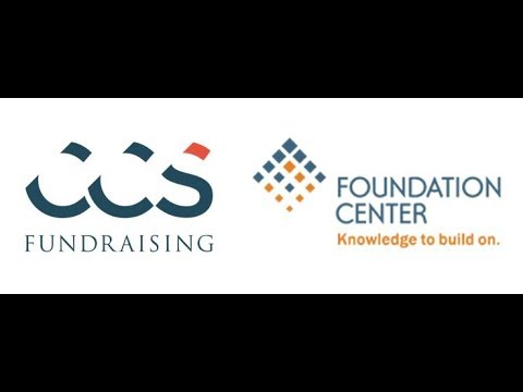 leading global fundraising consulting - 480×360