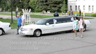 Заказ и аренда лимузинов ,услуги такси в Сумах ,аренда авто на свадьбу