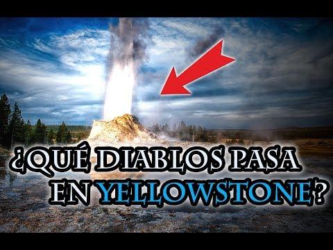 Yellowstone Está Haciendo Cosas Extrañas y NADIE Sabe por qué
