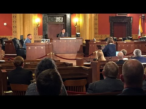 Council Rules and Reference Committee: Conversion Therapy Legislation