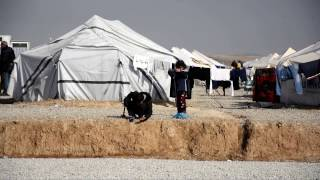 Thousands displaced from Mosul yearn for the day they can return home