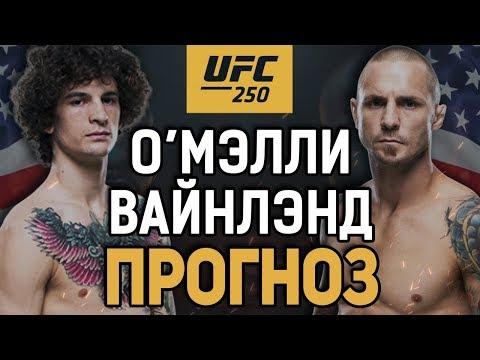 СОБЬЕТ ХАЙП?! Шон О'Мэлли vs Эдди Вайнлэнд / Прогноз к UFC 250