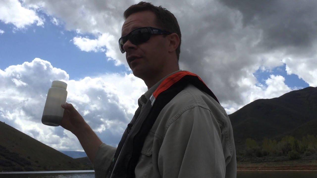 Deer Creek water sampled for quagga mussel invasion | Video