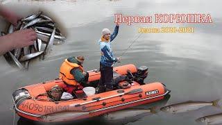 Первая КОРЮШКА в новом сезоне готовимся к зимней рыбалке