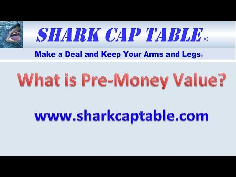What Is Pre Money Value?