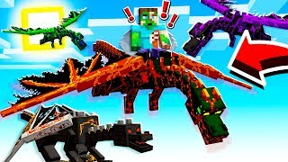 How to TRAIN your Minecraft DRAGONS!