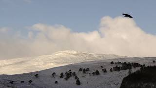 First snowfall of 2019 over Braemar in the Cairngorms National Park, Scotland