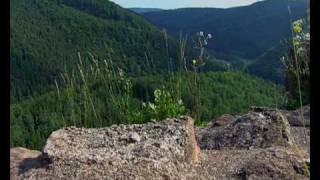 Le Parc naturel régional des Vosges du Nord en 1 minute