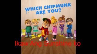 Video Ikaw ang sunshine ko - Abs cbn id 2017 (Chipmunks) download MP3, 3GP, MP4, WEBM, AVI, FLV April 2018