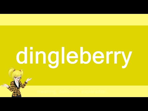 What is a dingleberry urban dictionary
