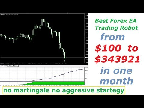 Best Profitable Forex EA Trading Robot – from $100 to $3,43,921 in one month