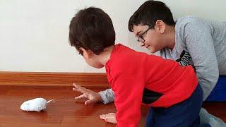 Berat Fare ile Oynadı. Pretend Play with Mouse Fun Kid Video