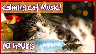 Calming Music For Cats! Soothe Your Cat With Soft Music and Help Them Relax! Reduce Stress ...